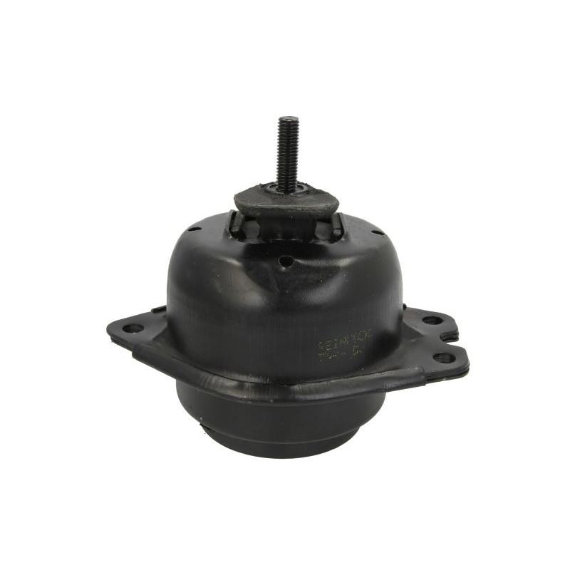 Support moteur REINHOCH [RH11-2033]